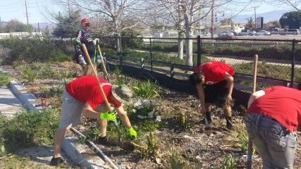Red Cross Central California Volunteers spend a Saturday planting a garden at a local Veteran's Home.